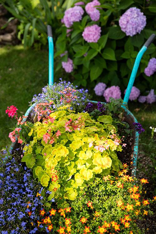 cartwithflowers